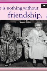 Магнет пријателство