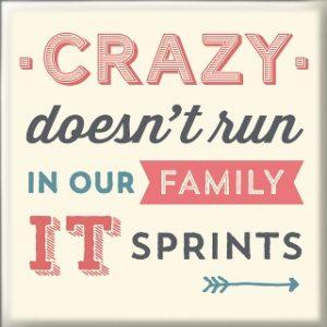 Магнет Crazy family